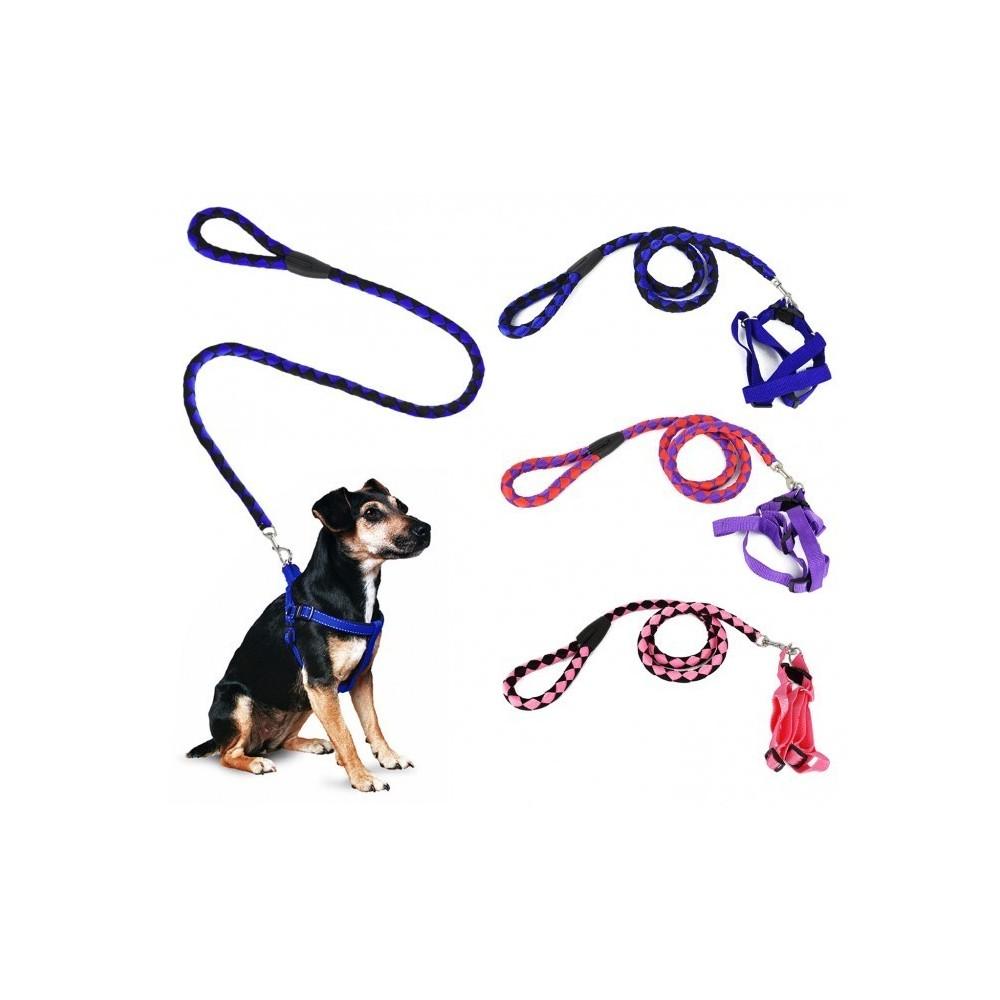 Harnais avec laisse courte 120 cm ART 5824 bicolore pour chiens petits et moyens