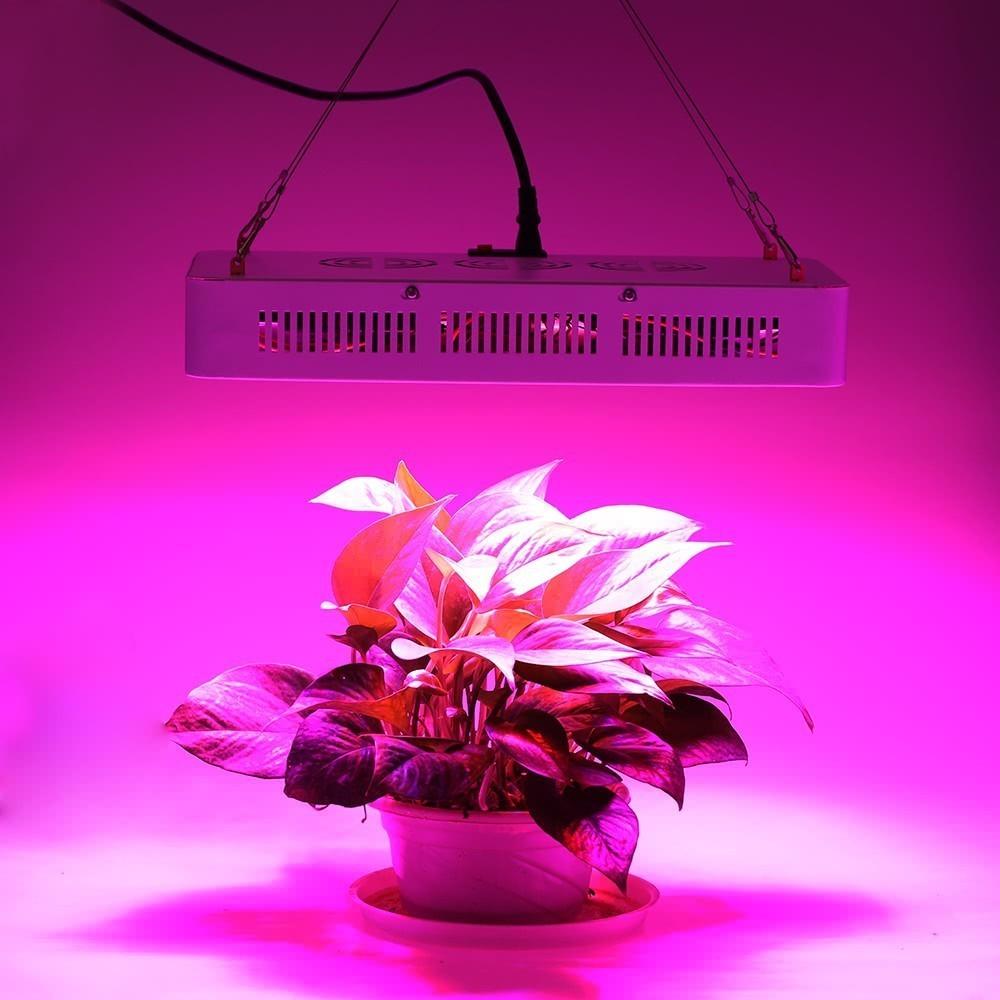 Intérieur Culture Lampe 150 Pour Horticole 1500w 4373 De Led En 10 I29DHEeWY