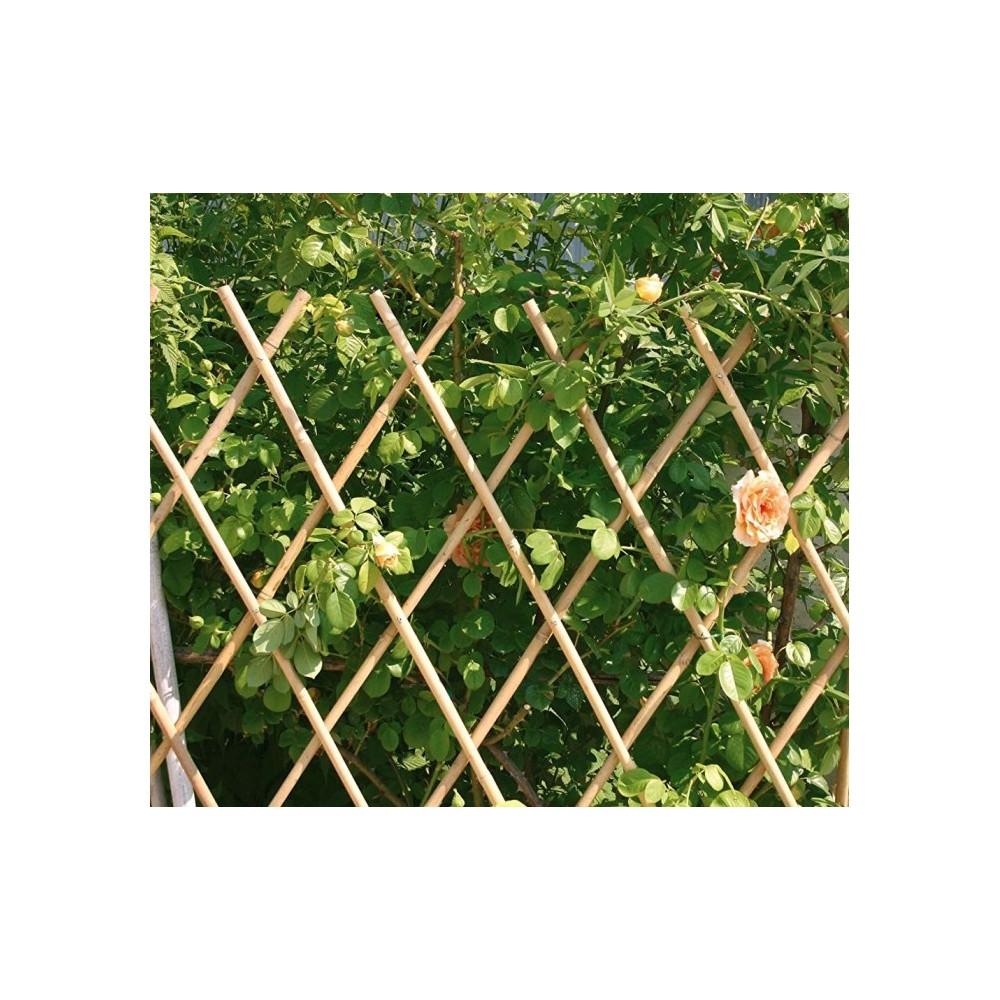 377512 Clôture extensible pour plante jardin ou support murale 60X240 CM