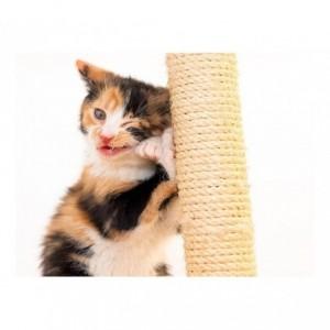 Sisal grattoir avec socle en bois pour les chats - jouet pour animal