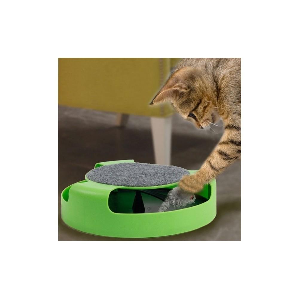jouet chat interieur