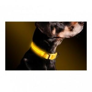Collier réglable LED pour chiens et chats différentes tailles et couleurs
