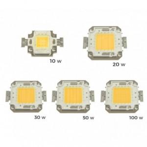 Pack de 2 plaques de LED de rechange 10-20-30-50 ou 100 watt - 10 W