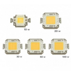Pack de 2 plaques de LED de rechange 10-20-30-50 ou 100 watt